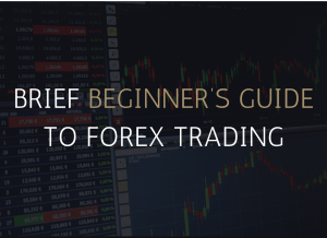 Brief Beginner's Guide To Forex Trading