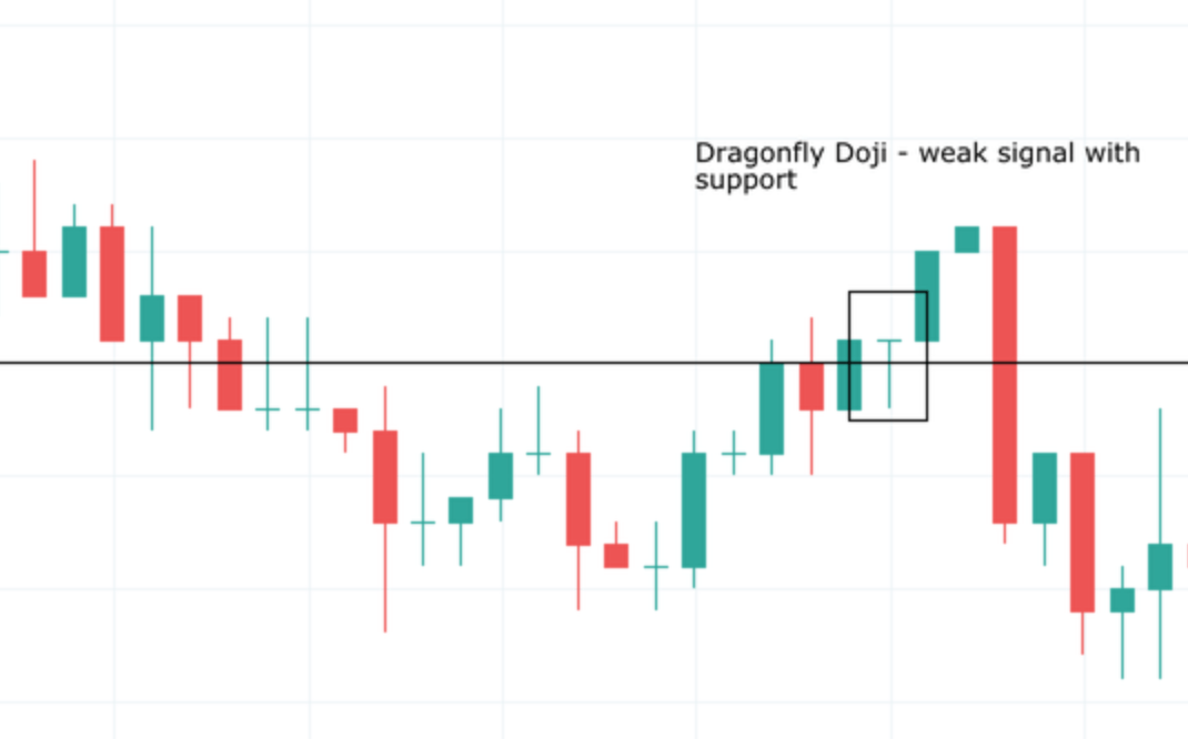 DRAGONFLY DOJI CANDLESTICK PATTERN WEAK SIGNAL WITH SUPPORT EXAMPLE