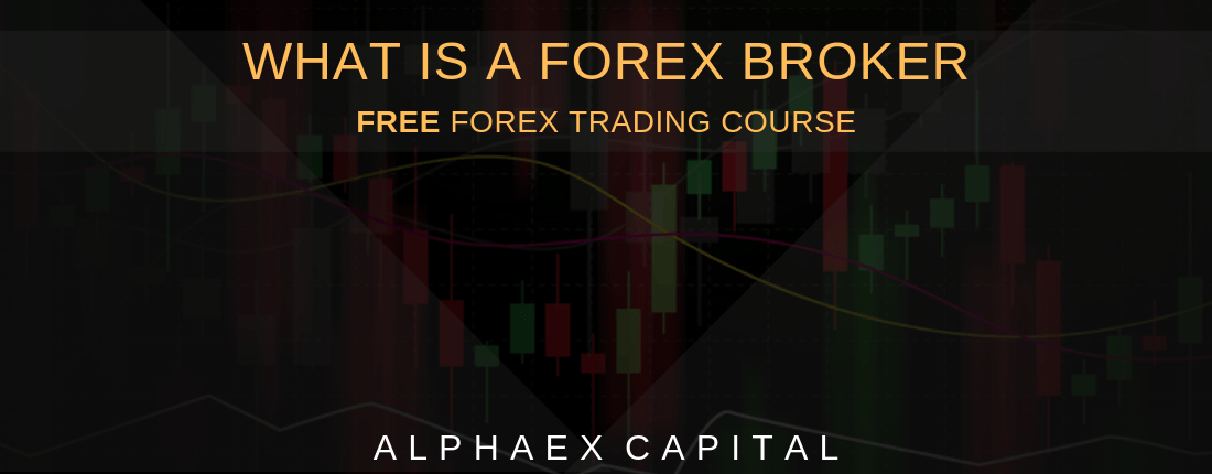 What Is A Forex Broker 2019