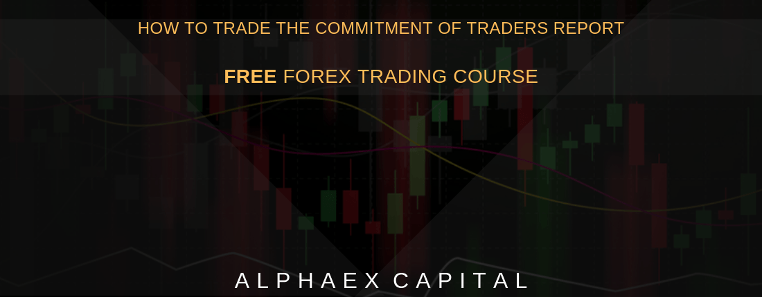 How To Trade The Commitment Of Traders Report For Beginners